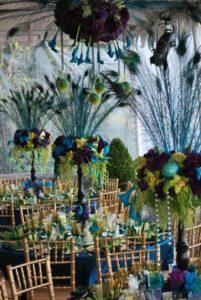 The Peacock Theme Wedding