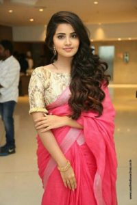 Anupama in saree
